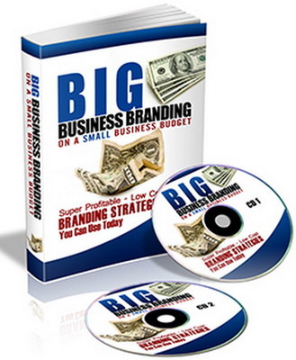 Pay for *NEW!* Big Business Branding On A Small Business Budget - BRANDING STRATEGIES!! Audio Interview(MP3) PLR!