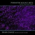 Thumbnail Brain Danse Fizmo Loop Samples Acid/Apple/REX