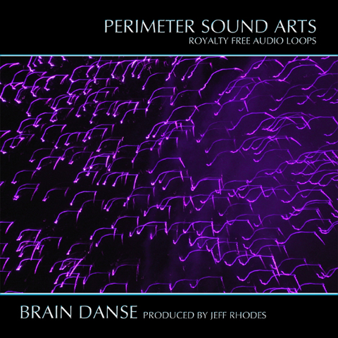 Pay for Brain Danse Loop Sample Collection REX Format