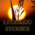 Pay for Peven Everett-LEOPARD STORIES.zip