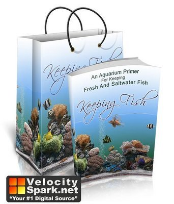 Pay for Keeping Fish - PLR Version