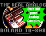 Thumbnail THE REAL ANALOG ROLAND TR 808 DRUM MACHINE SAMPLES