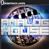 Thumbnail Analog House WAV Loops Samples Pack