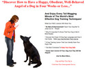 Thumbnail Dog Training PLR Autoresponder Messages
