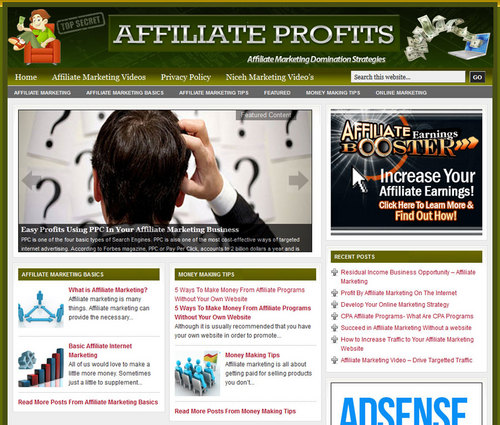 Pay for Affiliate Marketing PLR Website with Private Lable Rights
