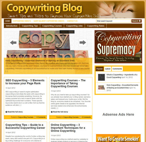 Pay for Copywriting PLR Website with Private Label Rights