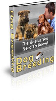 Pay for Dog Breeding (PLR)