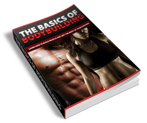 Pay for Basic of Bodybuilding PLR Ebook + BONUS (50 PLR Articles)