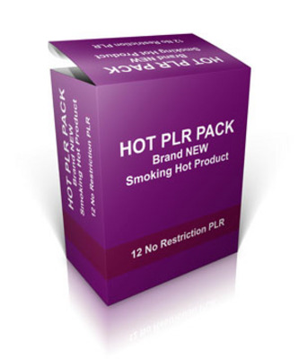 Pay for Hot PLR Pack