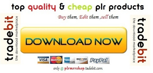 Thumbnail Business Bloggers Manual - Quality PLR Download