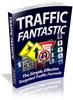 Thumbnail Traffic Fantastic plr