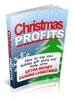 Thumbnail Christmas Profits plr