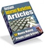 Thumbnail Instant Internet Marketing Articles PLR