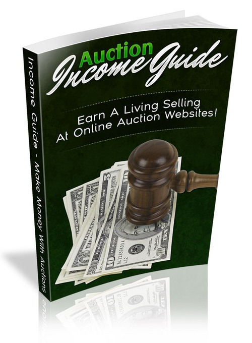 Pay for Auction Income Guide plr