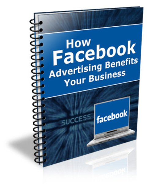 Pay for How Facebook Advertising Benefits Your Business plr