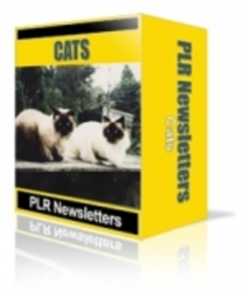 Pay for Cats Niche Newsletters pu