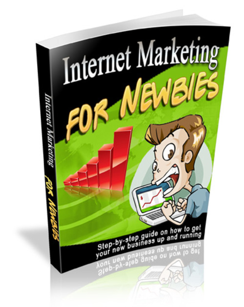 Pay for Internet Marketing for Newbies (Viral PLR)