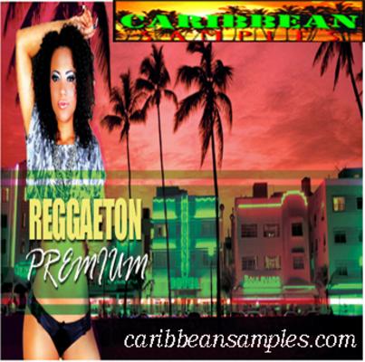 Pay for Reggaeton premium-Wav construction kits