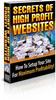 Thumbnail Secrets of High Profit Websites