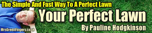Pay for the perfect lawn