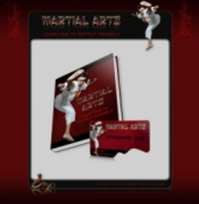 Pay for Martial Arts Ebook With PLR