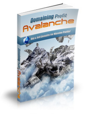 Pay for Domain Profits Avalanche (MRR)