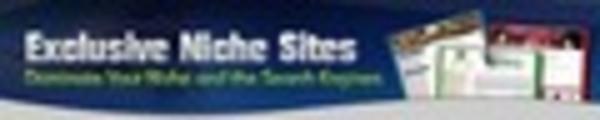 Thumbnail Exclusive Niche Site