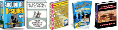 Thumbnail The Webmasters Auction Package