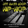 Thumbnail GigaLoops - 300 Hip Hop Bass Loops