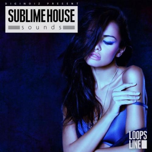 Pay for DigiNoiz - Sublime House Sounds