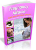 Thumbnail Pregnancy Miracle Book - Lisa Olson  Pregnancy Miracle Book
