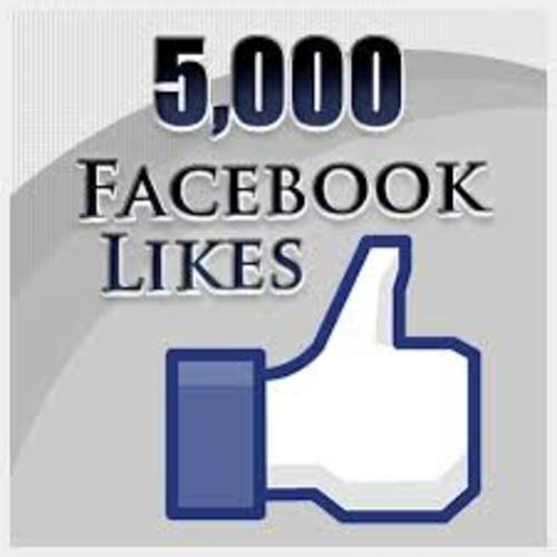 Pay for Get 5000 facebook real human fan likes