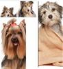 Thumbnail Become A Dog Groomer
