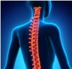 Thumbnail Back Pain Tips MRR/Giveaway Rights