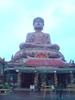 Thumbnail The Sitting Buddha