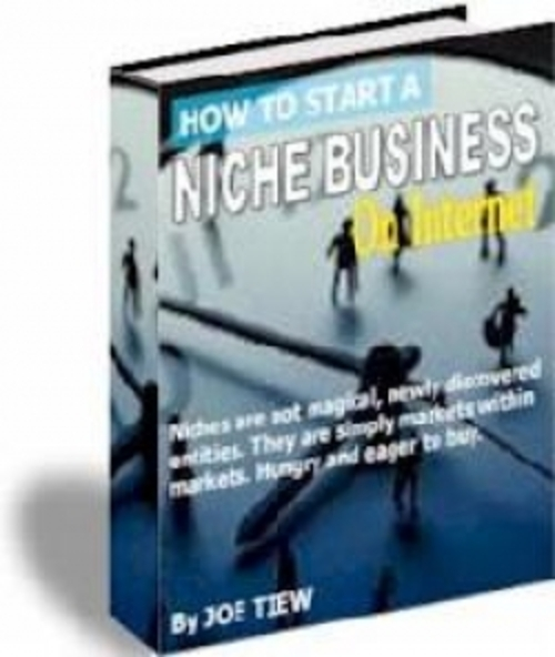 Pay for How to Start A Niche Business On Internet