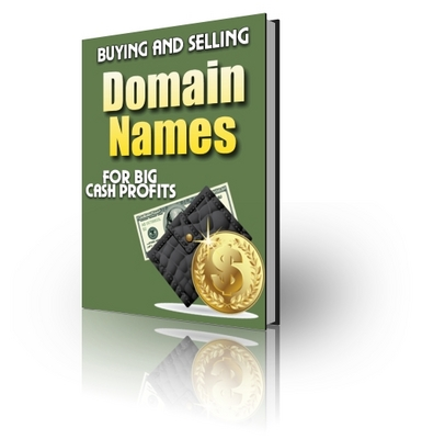 Pay for Buying and Selling  Domain Names For Big Cash Profits PLR