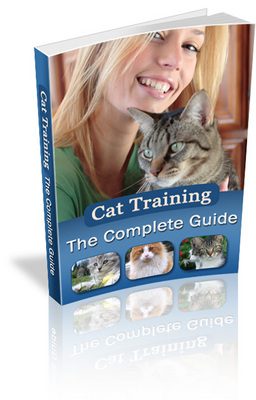 Pay for The Complete Guide to Cat Training (MRR)