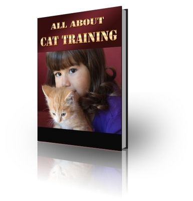 Pay for All About Cat Training (PLR)