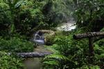 Thumbnail Meditation Music Relax Calm Water