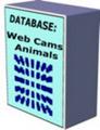 Thumbnail *HOT!* 10 Databases
