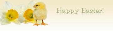 Thumbnail *HOT!* Easter Chick Wordpress Theme