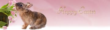 Thumbnail *HOT!* Easter Wordpress Theme