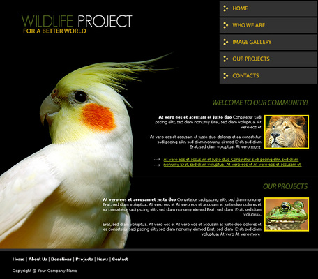 Pay for Wildlife Website Template