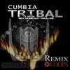 Thumbnail Cumbia Tribal Loops & Samples (apple loops, Rex 2, Wav)