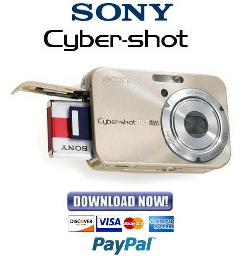 sony cyber shot dsc h300 manual pdf