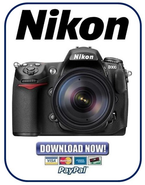 Size: 33.1936 MB - Nikon-D300-Service-Manual---Part - Platform: Misc