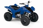 Thumbnail 2008 YAMAHA RAPTOR 80 ATV REPAIR SERVICE MANUAL PDF DOWNLOAD