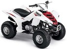Thumbnail 2006 YAMAHA RAPTOR 80 ATV REPAIR SERVICE MANUAL PDF DOWNLOAD