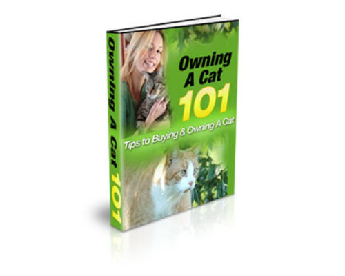 Pay for Educational Cat Owners Information Guide eBook